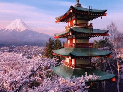 Туристическая виза в Японию. Оформить визу в Японию